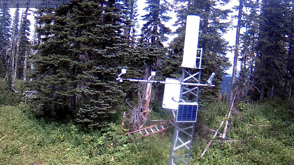 Latest camera snap shot of Longworth Upper (1A05P)
