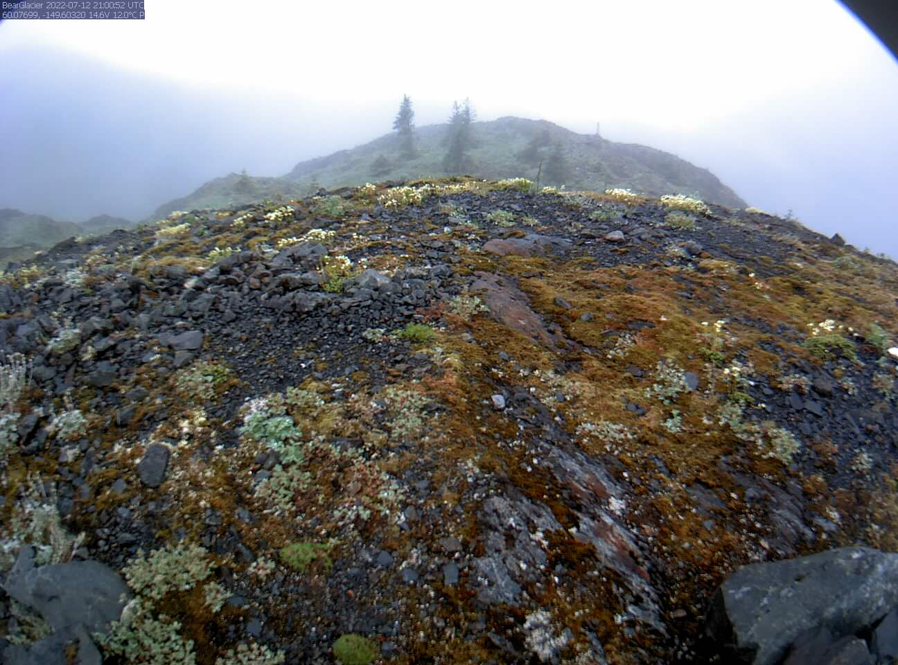 Bear Glacier Ice-Dammed Lake Webcam preview image